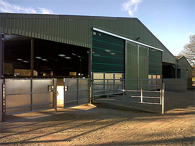 Cattle Shed - BHC Agricultural Steelwork Contractor