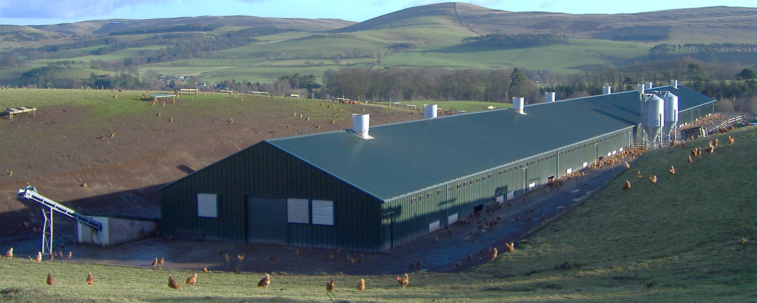 BHC Agricultural Steelwork Contractor